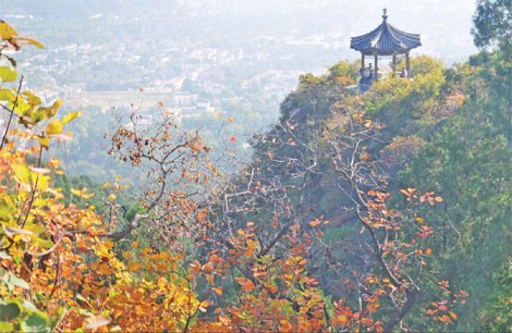 Fragrant Hills is a special park on the outskirts of the city that offers lush open spaces.